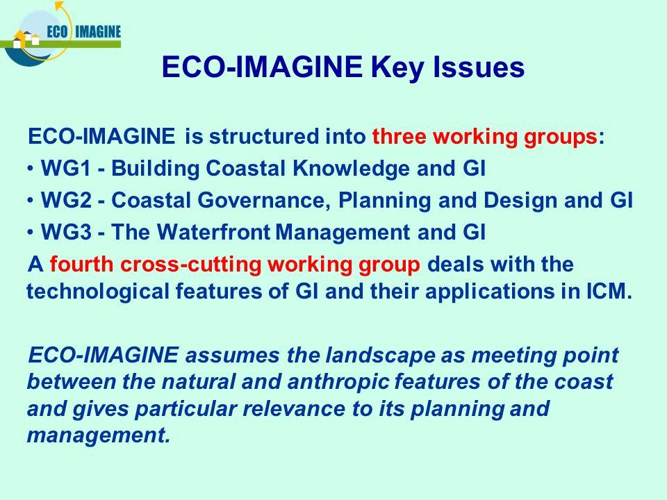 ECO-IMAGINE Key Issues
