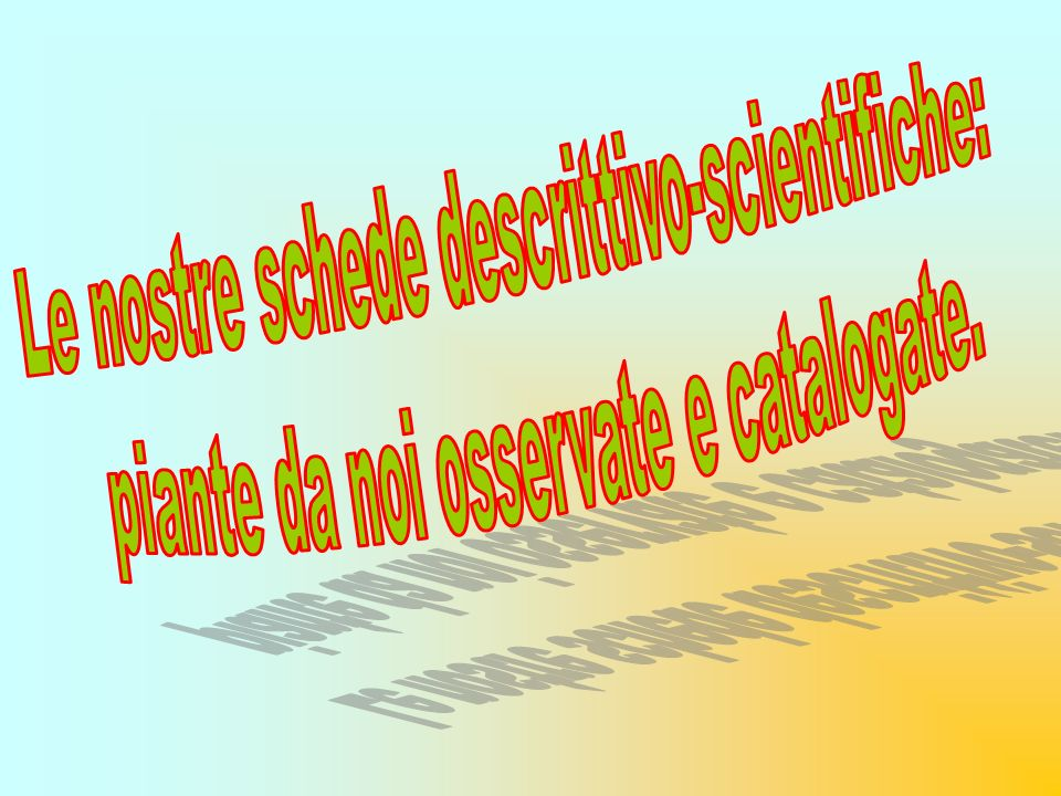 Le nostre schede descrittivo-scientifiche: