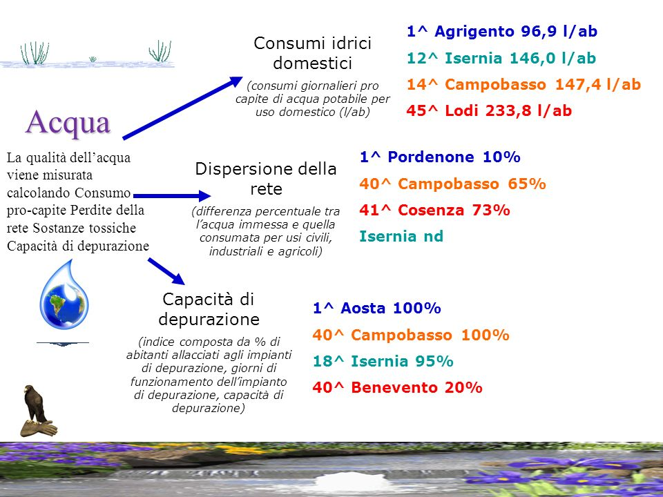 Acqua Consumi idrici domestici Dispersione della rete