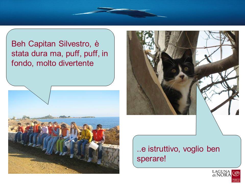 Beh Capitan Silvestro, è stata dura ma, puff, puff, in fondo, molto divertente