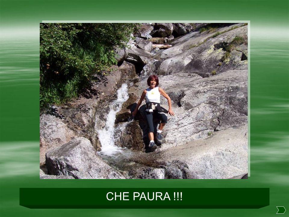 CHE PAURA !!!