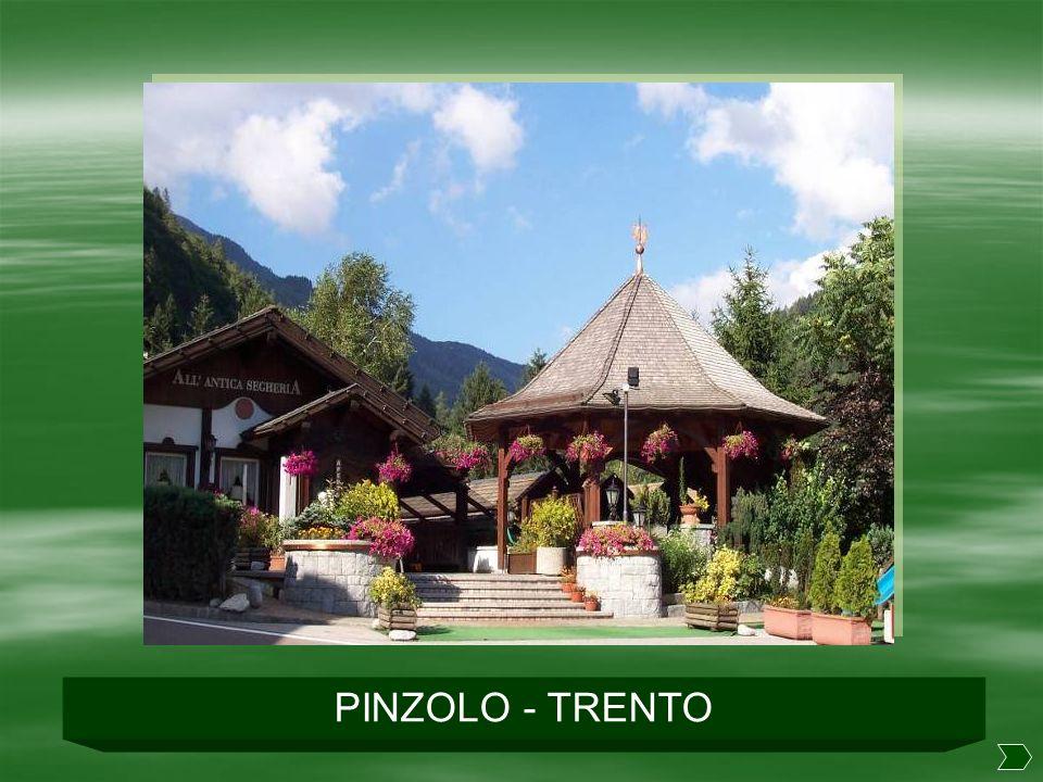 PINZOLO - TRENTO