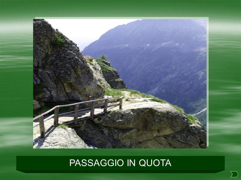 PASSAGGIO IN QUOTA