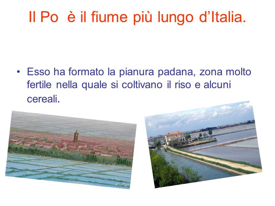 Il Po è il fiume più lungo d'Italia.