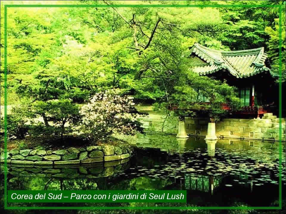 Corea del Sud – Parco con i giardini di Seul Lush