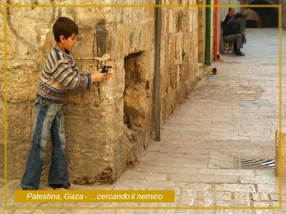 Palestina, Gaza - ...cercando il nemico
