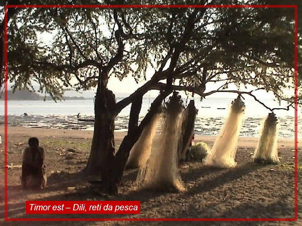 Timor est – Dili, reti da pesca