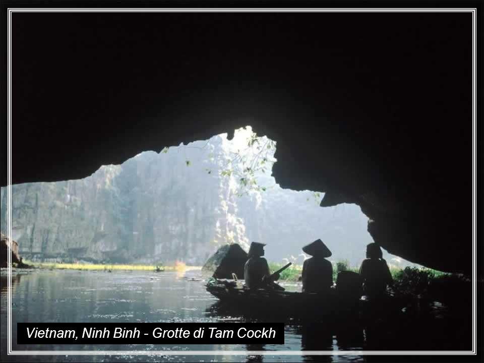 Vietnam, Ninh Binh - Grotte di Tam Cockh