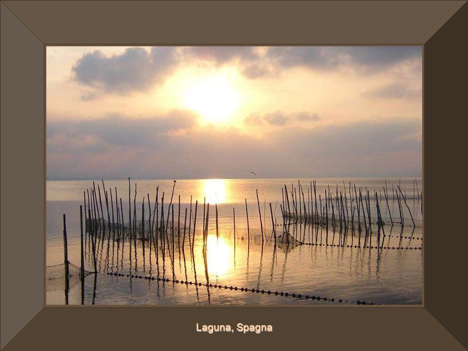 Laguna, Spagna