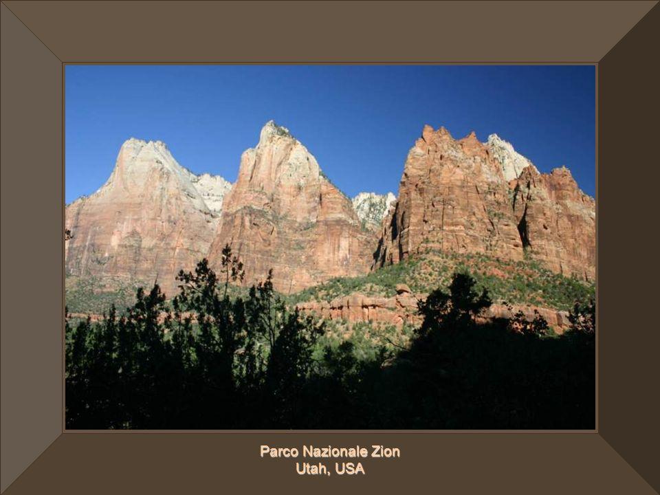 Parco Nazionale Zion Utah, USA