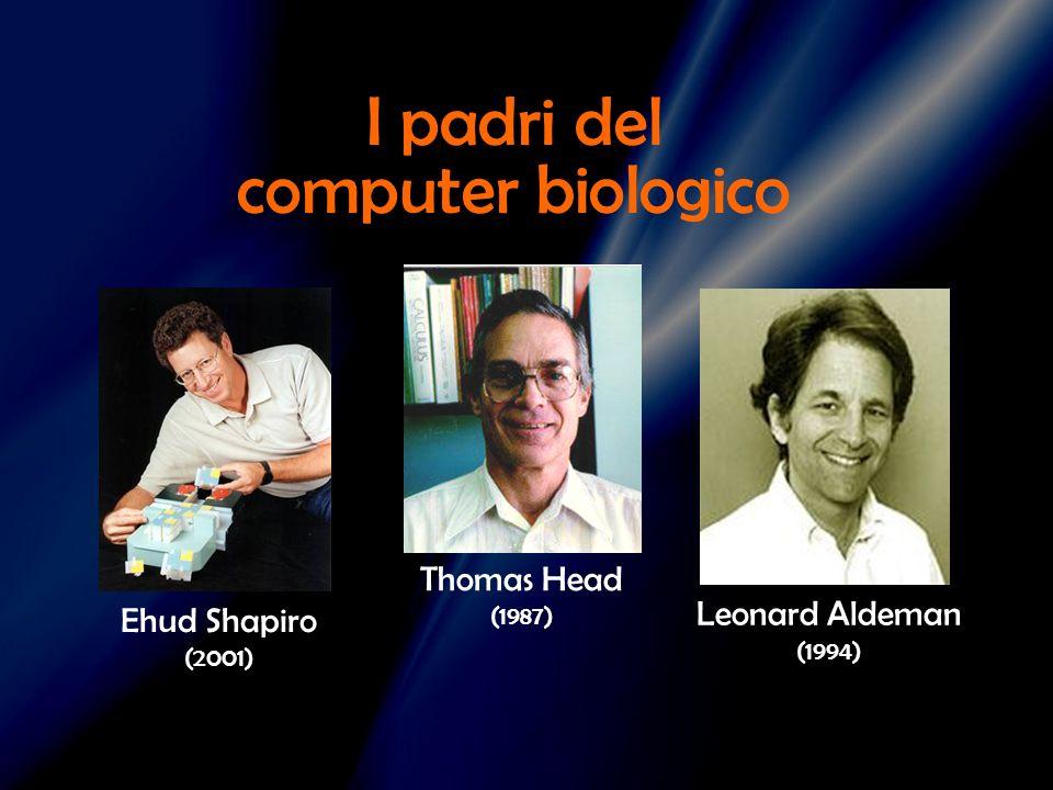 I padri del computer biologico Thomas Head Leonard Aldeman (1994)