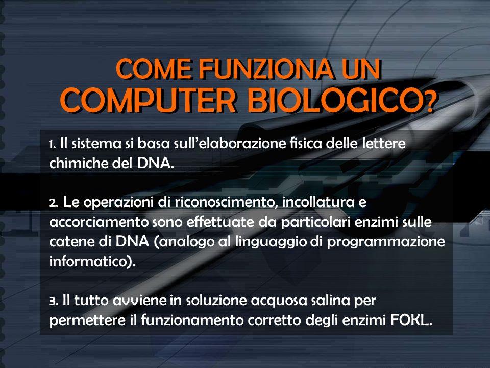 COME FUNZIONA UN COMPUTER BIOLOGICO