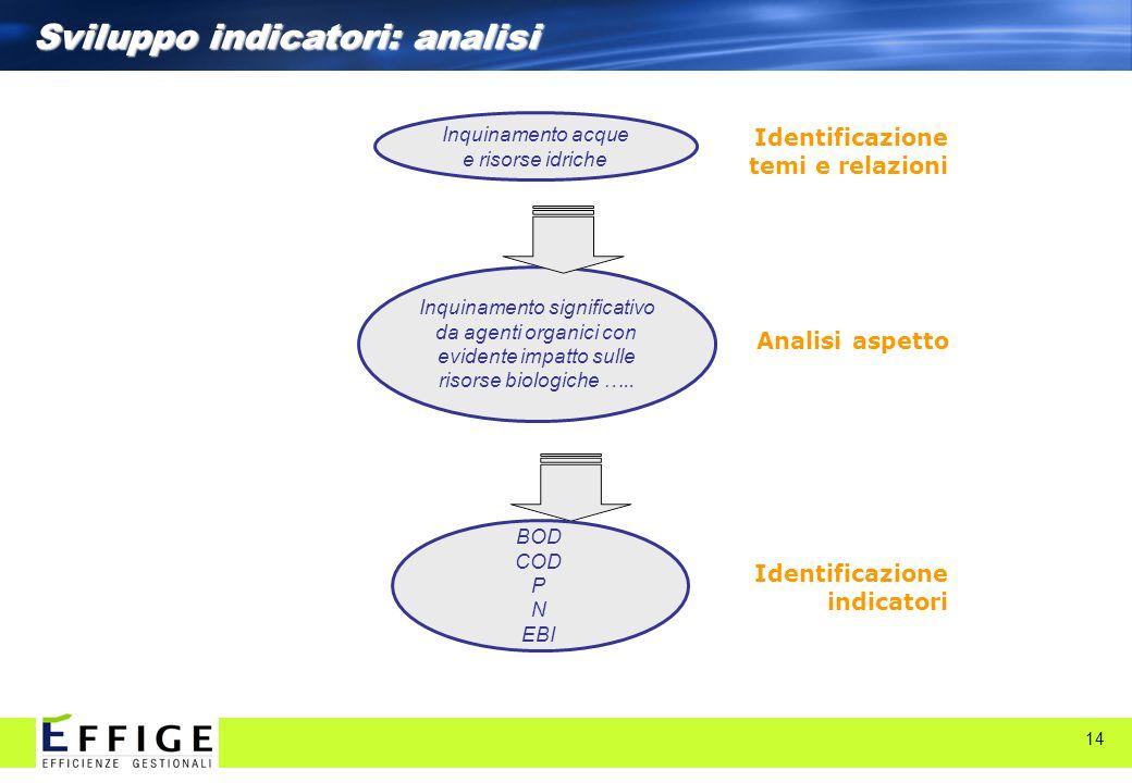 Sviluppo indicatori: analisi
