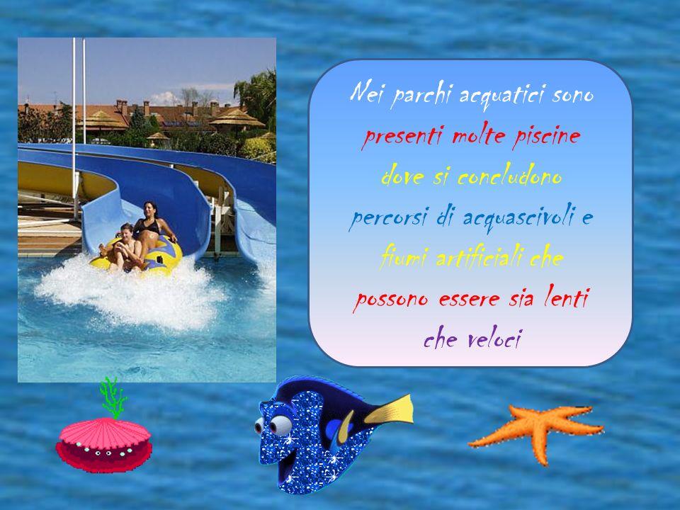 Nei parchi acquatici sono presenti molte piscine dove si concludono percorsi di acquascivoli e fiumi artificiali che possono essere sia lenti che veloci