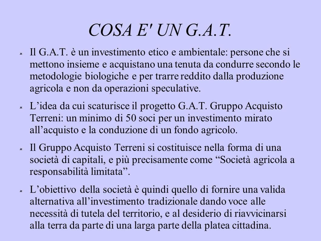 COSA E UN G.A.T.