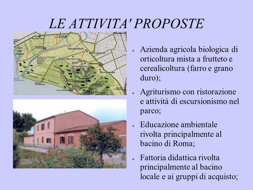 LE ATTIVITA PROPOSTE Azienda agricola biologica di orticoltura mista a frutteto e cerealicoltura (farro e grano duro);