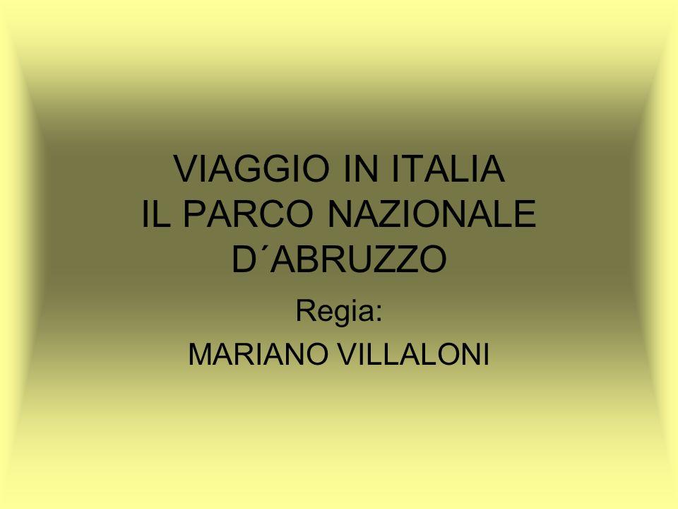VIAGGIO IN ITALIA IL PARCO NAZIONALE D´ABRUZZO