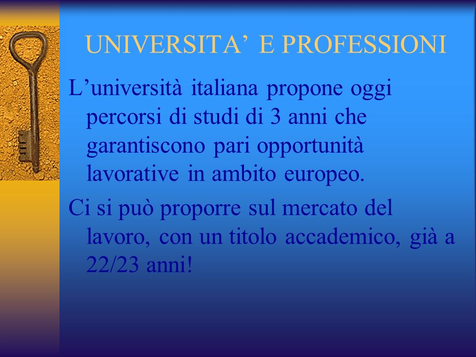 UNIVERSITA' E PROFESSIONI