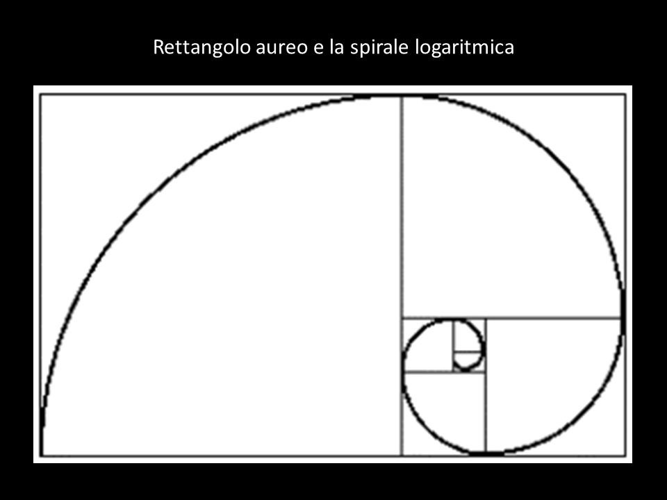 Rettangolo aureo e la spirale logaritmica