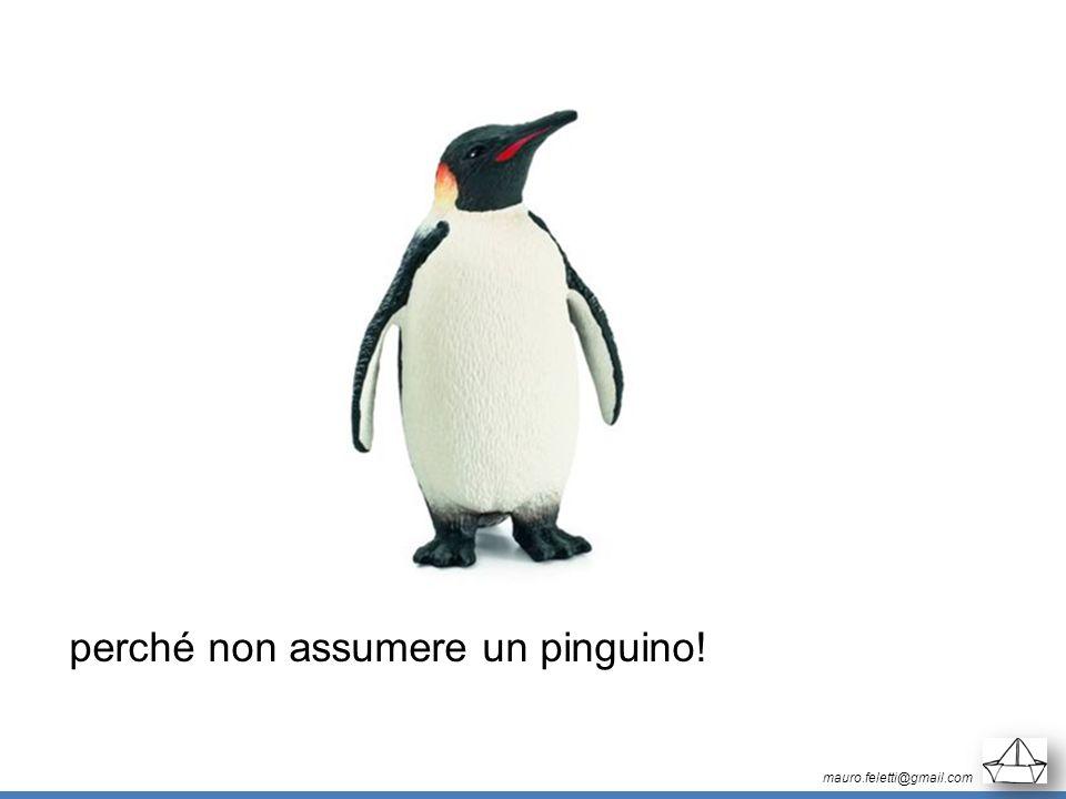 perché non assumere un pinguino!