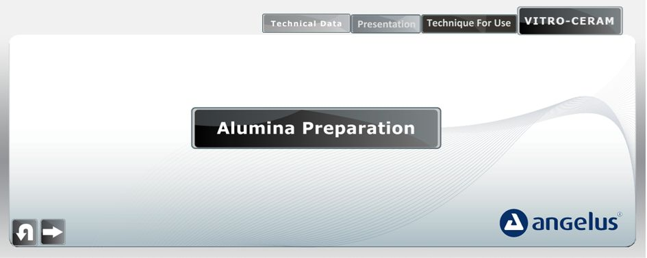 alumina preparation