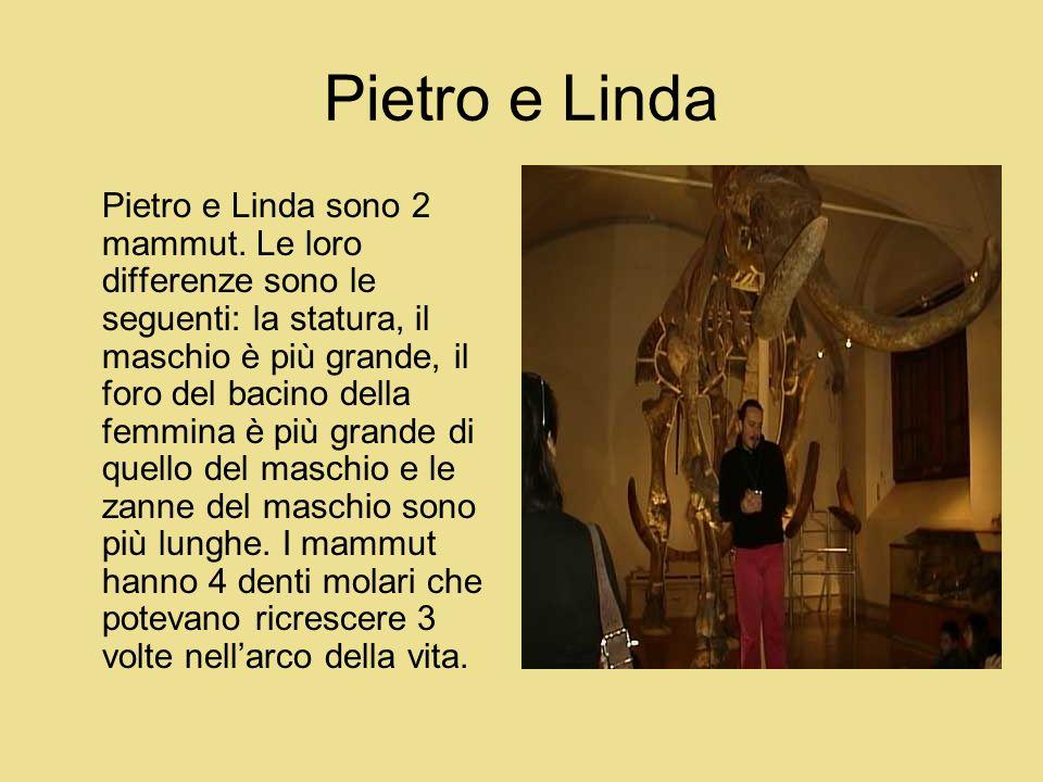 Pietro e Linda