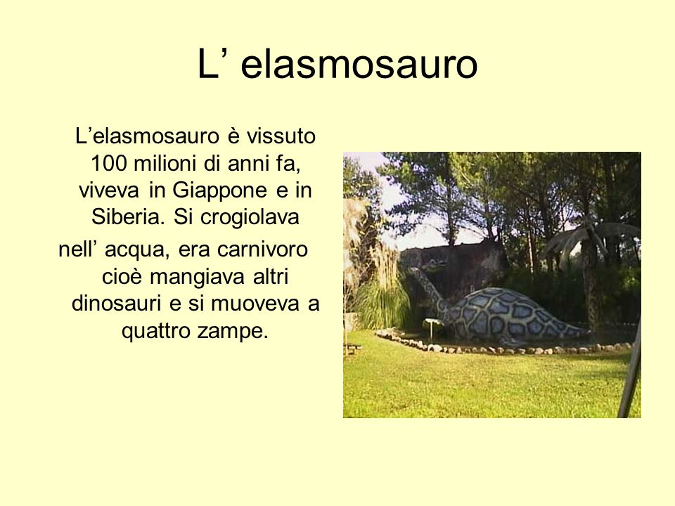 L' elasmosauro L'elasmosauro è vissuto 100 milioni di anni fa, viveva in Giappone e in Siberia. Si crogiolava.