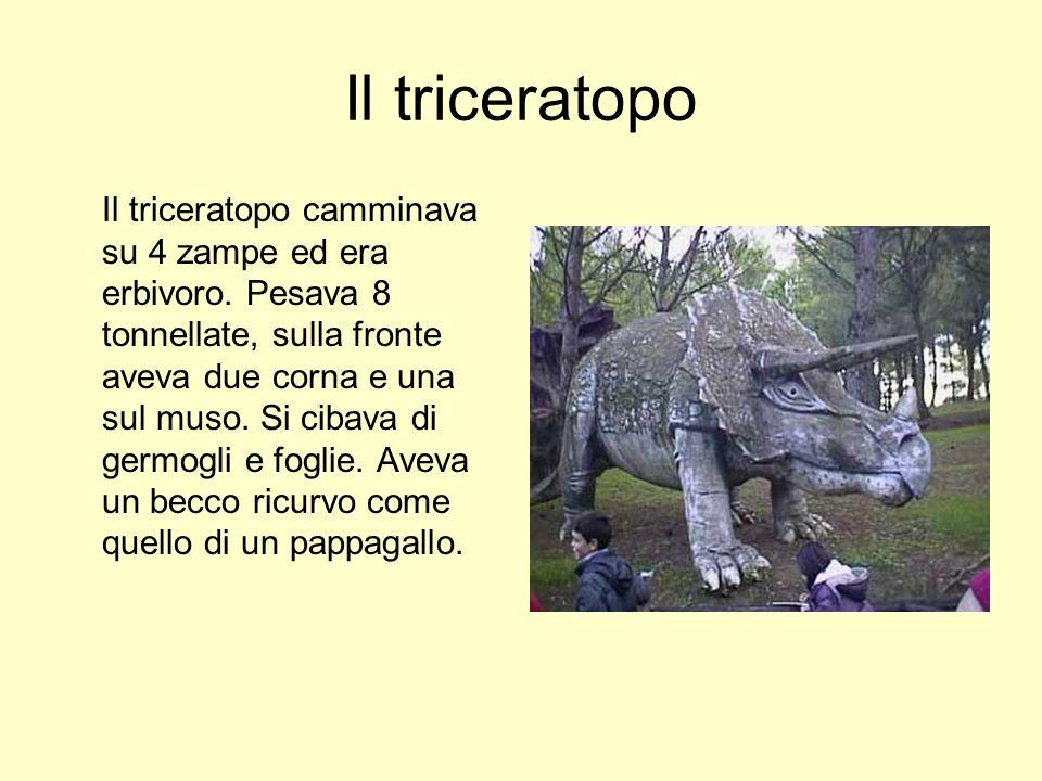 Il triceratopo