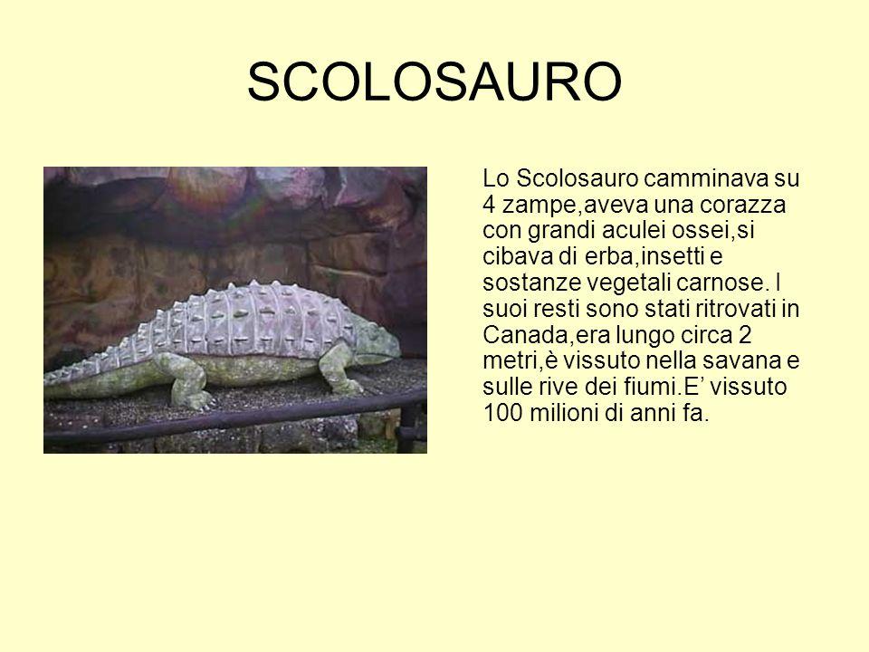 SCOLOSAURO