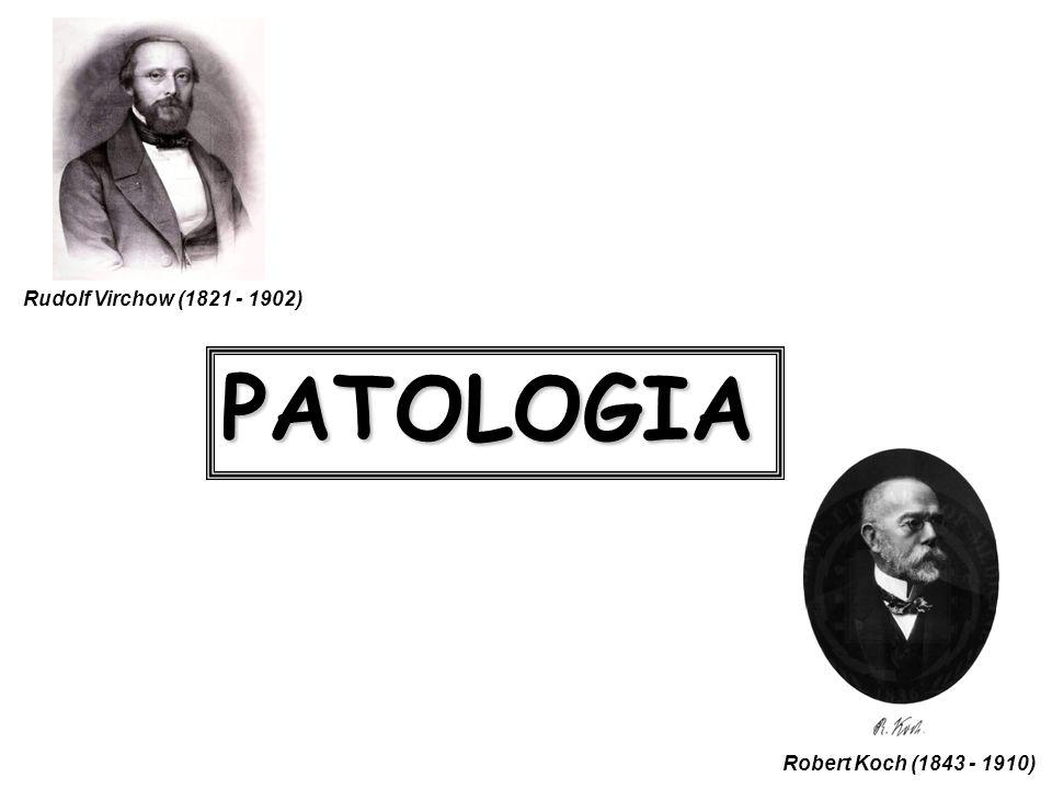 Rudolf Virchow (1821 - 1902) PATOLOGIA Robert Koch (1843 - 1910)