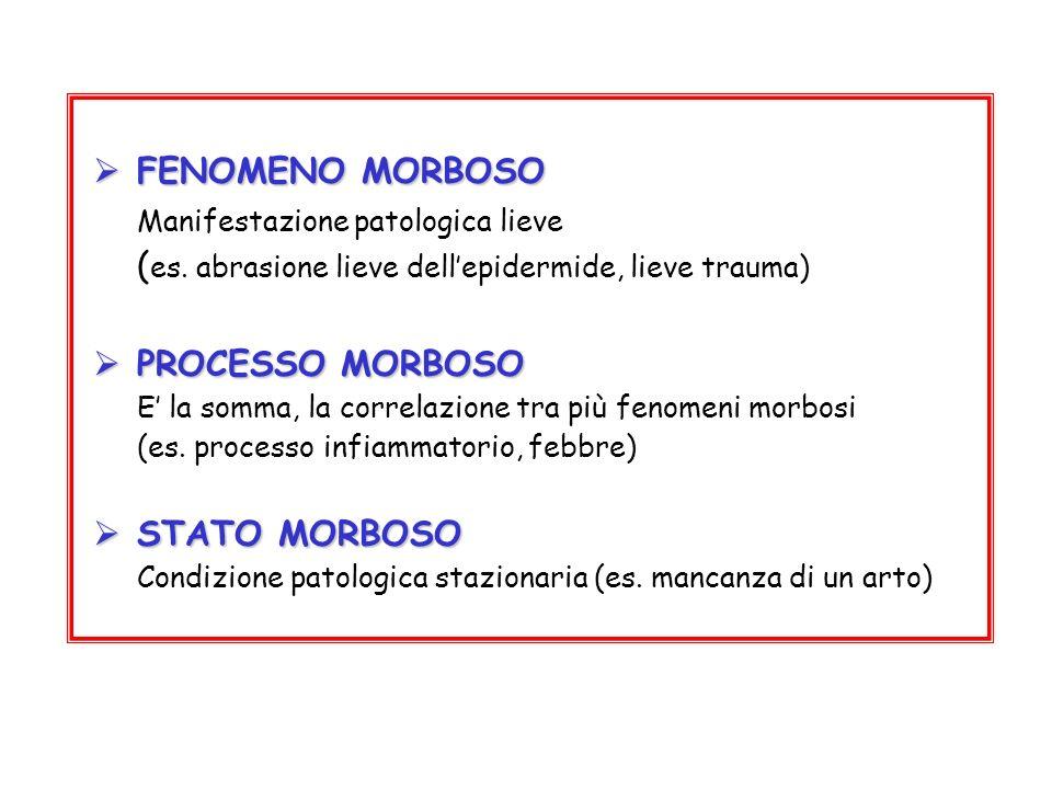 (es. abrasione lieve dell'epidermide, lieve trauma) PROCESSO MORBOSO