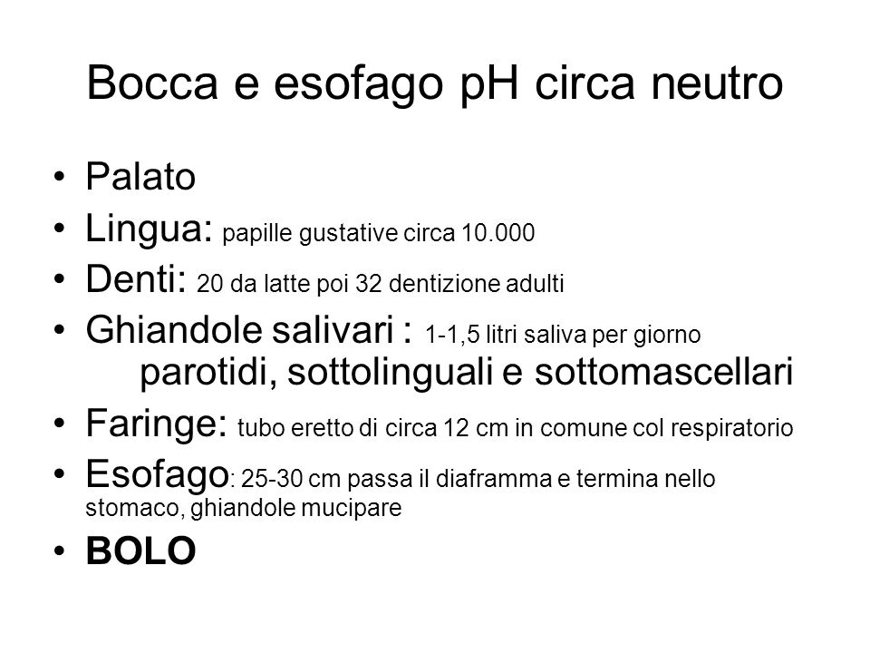 Bocca e esofago pH circa neutro