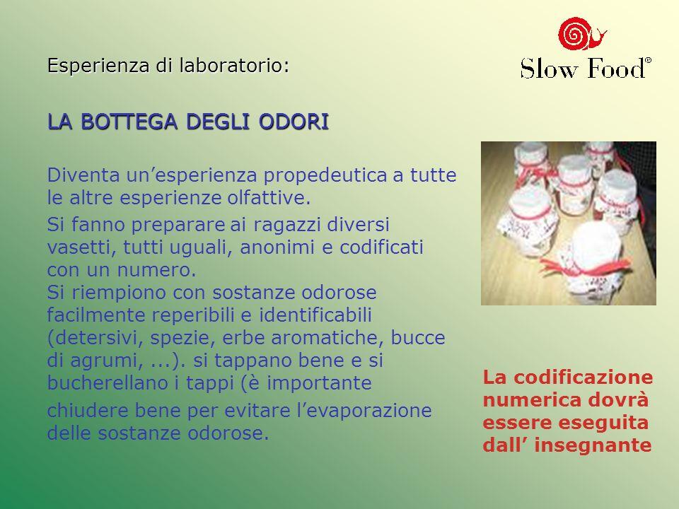Esperienza di laboratorio: