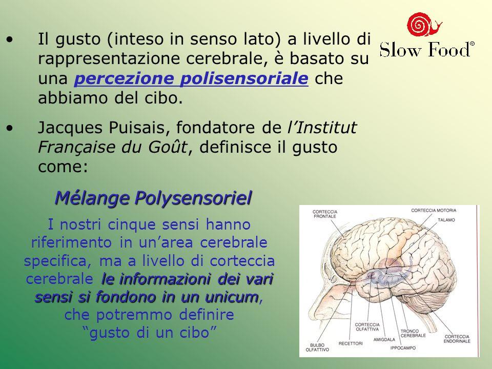 Mélange Polysensoriel