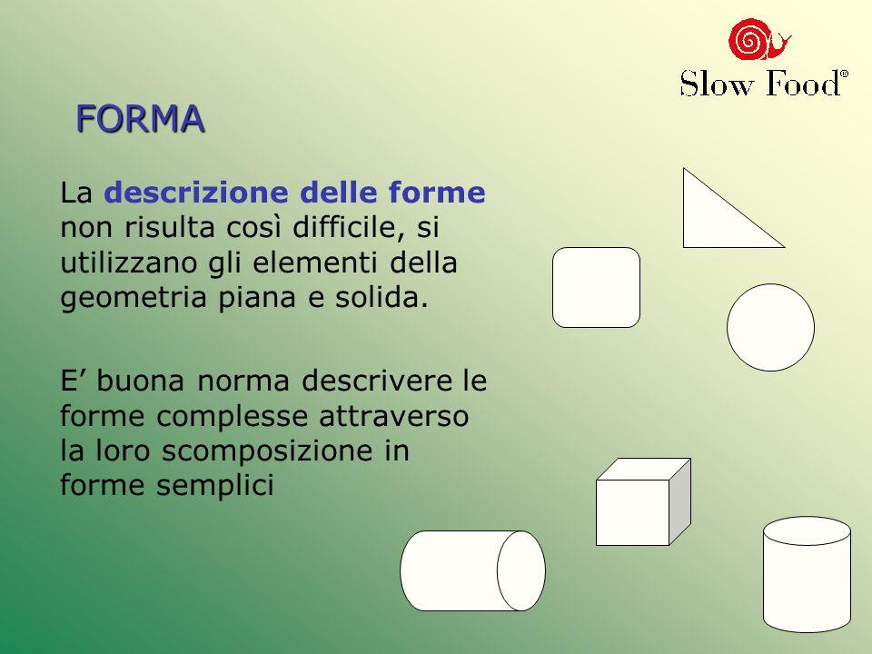 FORMA La descrizione delle forme non risulta così difficile, si utilizzano gli elementi della geometria piana e solida.