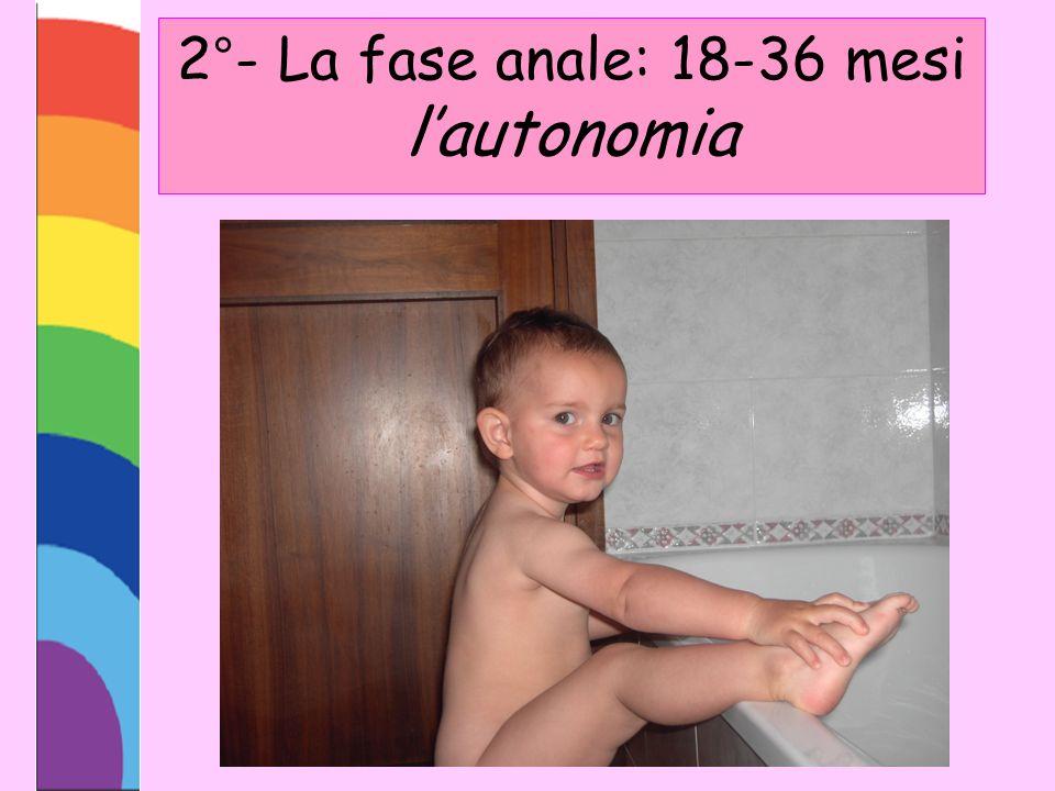 2°- La fase anale: 18-36 mesi l'autonomia