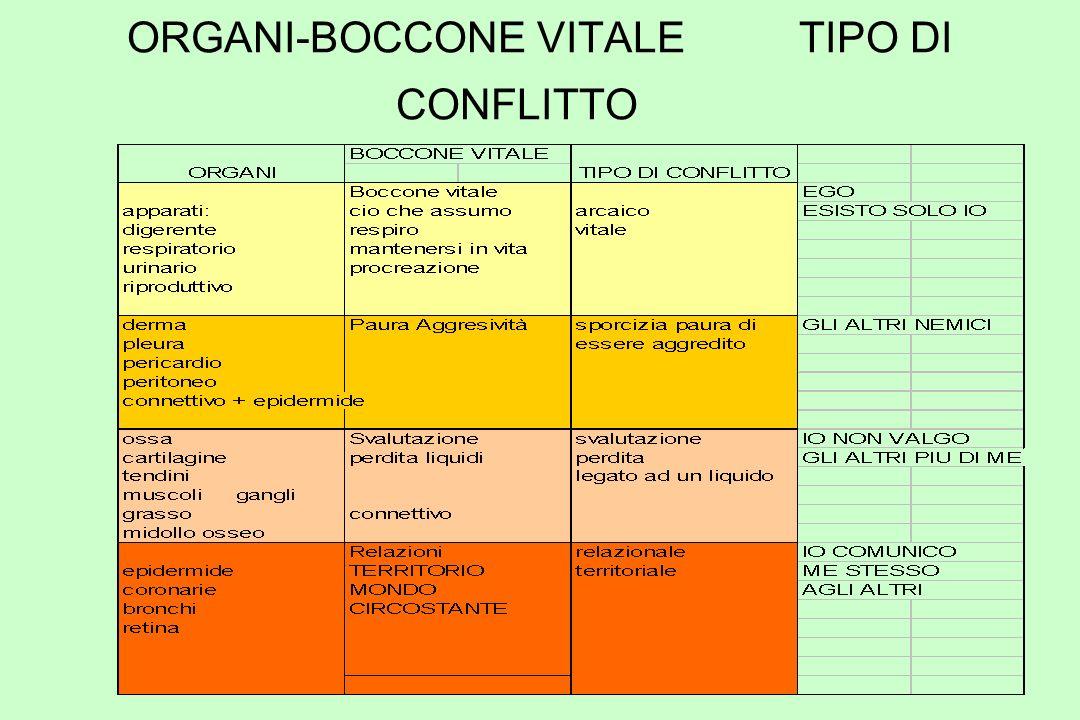 ORGANI-BOCCONE VITALE TIPO DI CONFLITTO