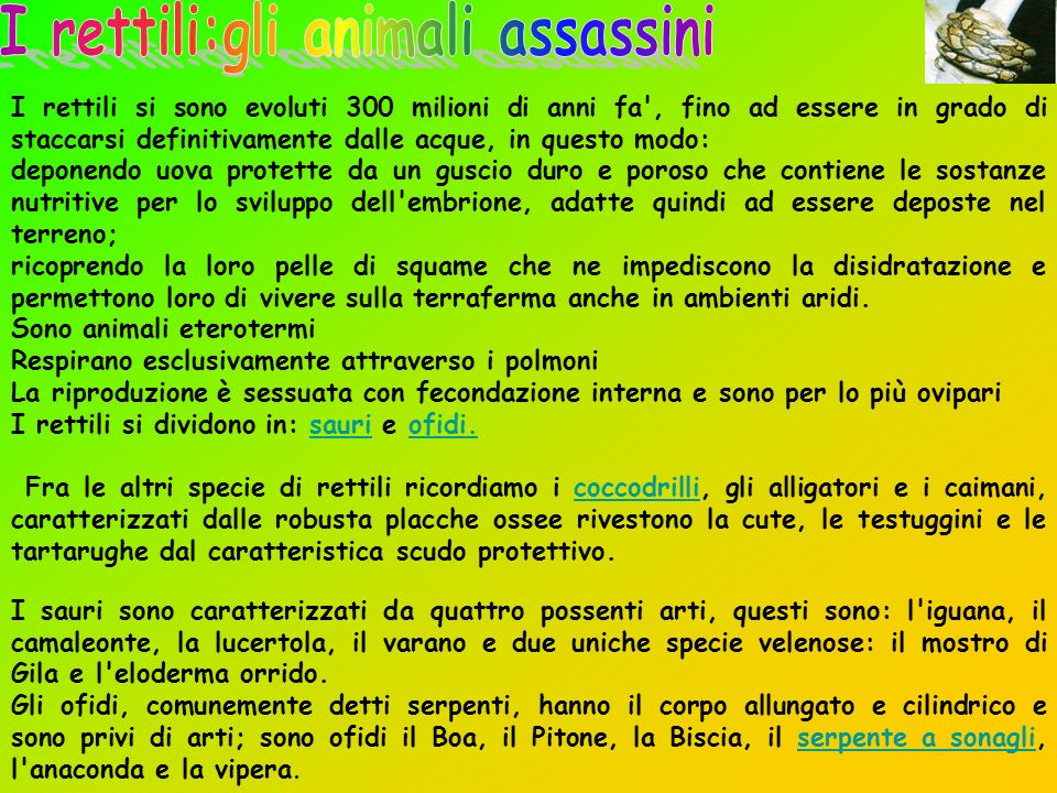 I rettili:gli animali assassini