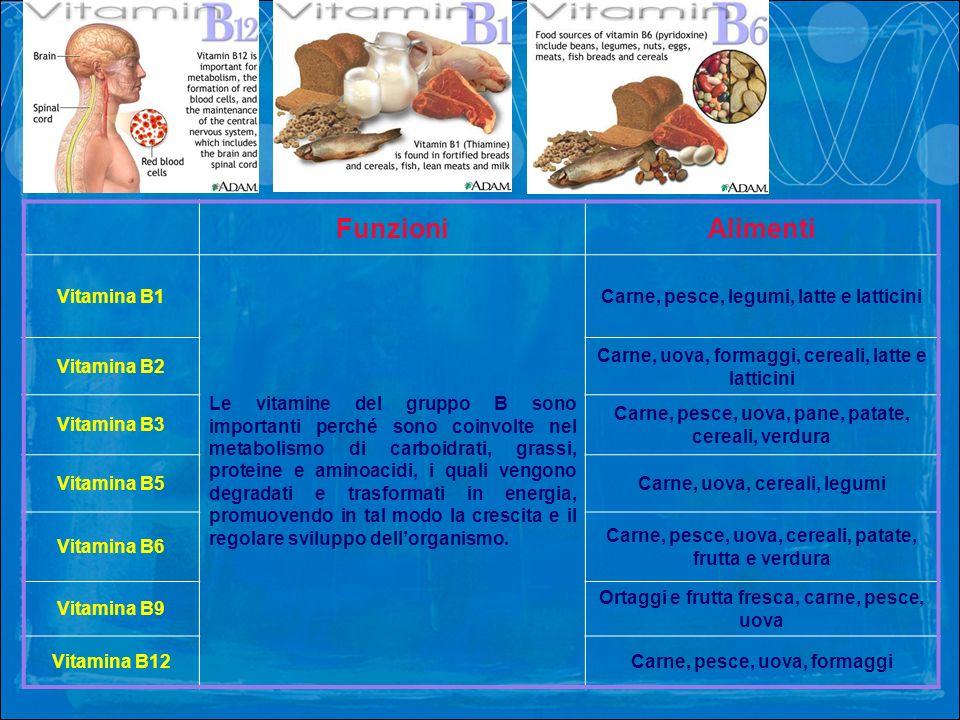 Funzioni Alimenti Vitamina B1