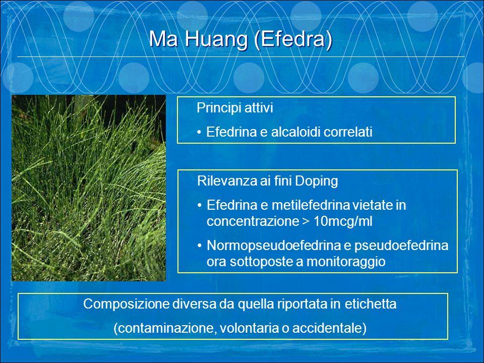 Ma Huang (Efedra) Principi attivi Efedrina e alcaloidi correlati