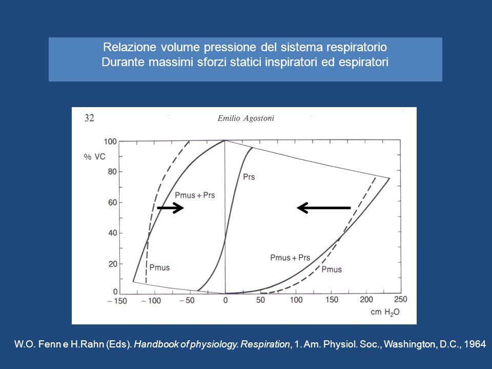 Relazione volume pressione del sistema respiratorio