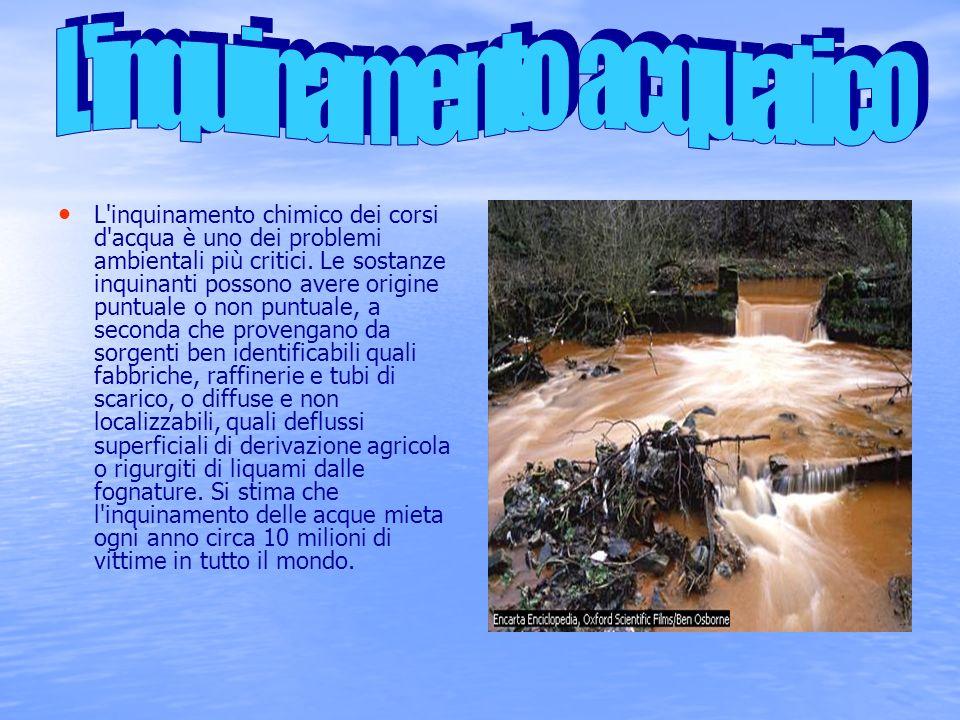 L inquinamento acquatico