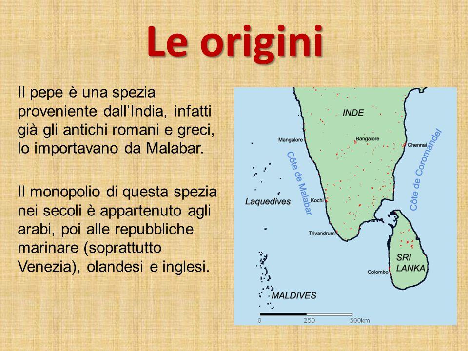 Le origini Il pepe è una spezia proveniente dall'India, infatti già gli antichi romani e greci, lo importavano da Malabar.