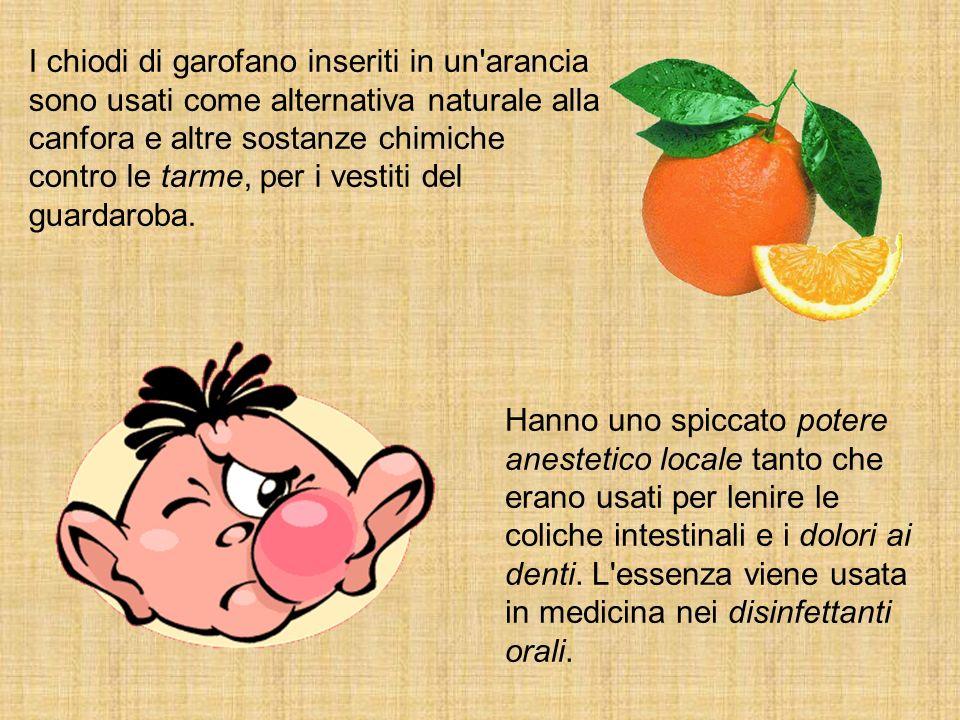 I chiodi di garofano inseriti in un arancia sono usati come alternativa naturale alla canfora e altre sostanze chimiche contro le tarme, per i vestiti del guardaroba.