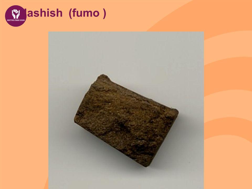 Hashish (fumo )