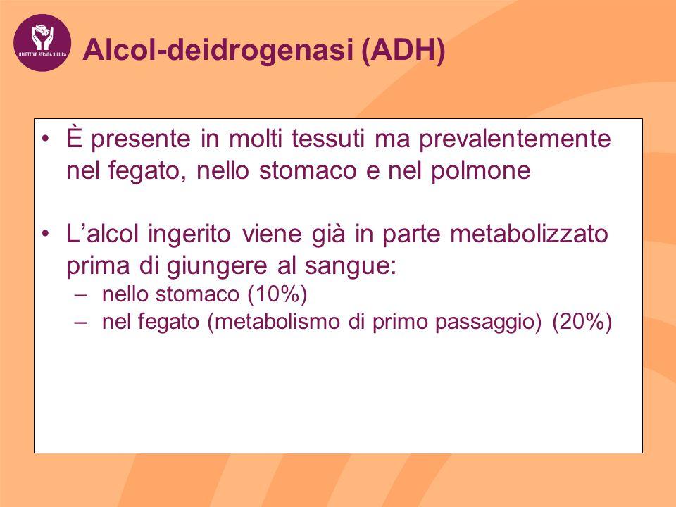 Alcol-deidrogenasi (ADH)