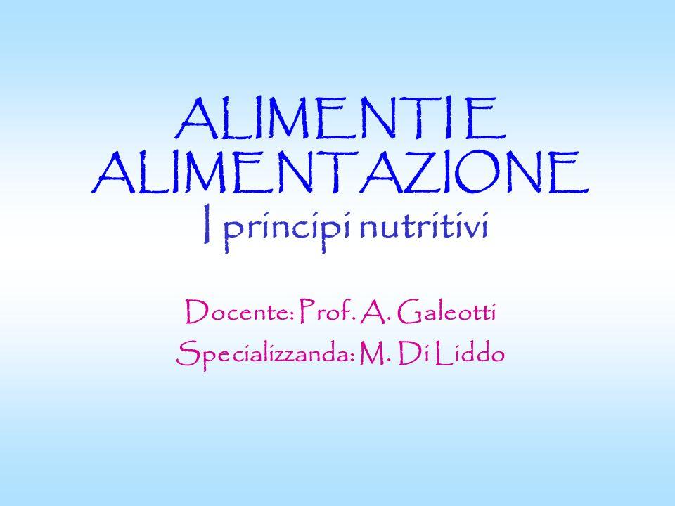 ALIMENTI E ALIMENTAZIONE I principi nutritivi Docente: Prof. A