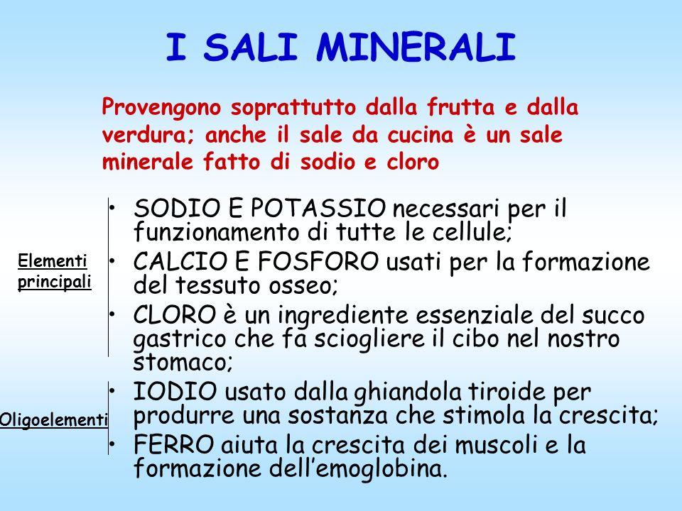I SALI MINERALI Provengono soprattutto dalla frutta e dalla verdura; anche il sale da cucina è un sale minerale fatto di sodio e cloro.