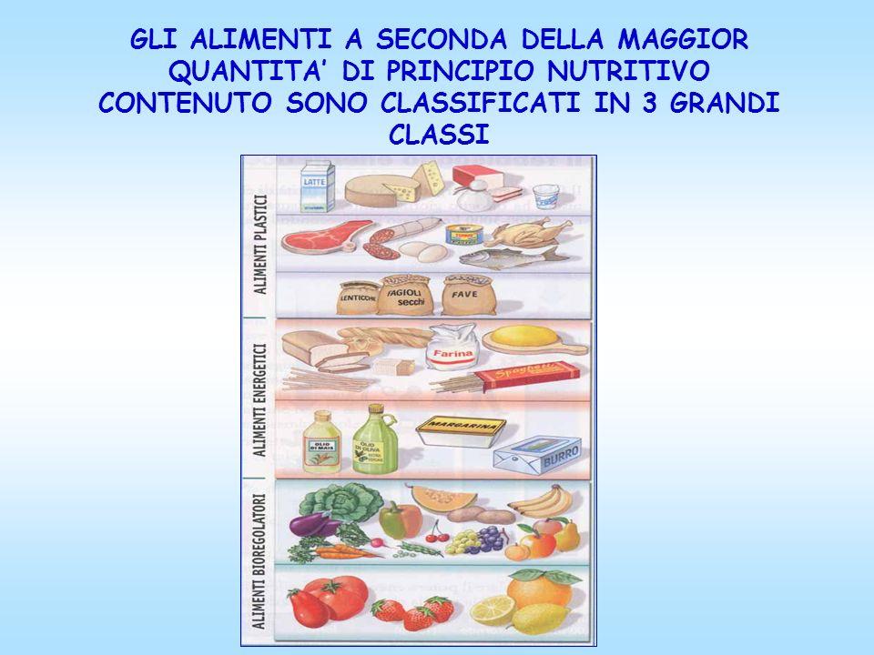 GLI ALIMENTI A SECONDA DELLA MAGGIOR QUANTITA' DI PRINCIPIO NUTRITIVO CONTENUTO SONO CLASSIFICATI IN 3 GRANDI CLASSI