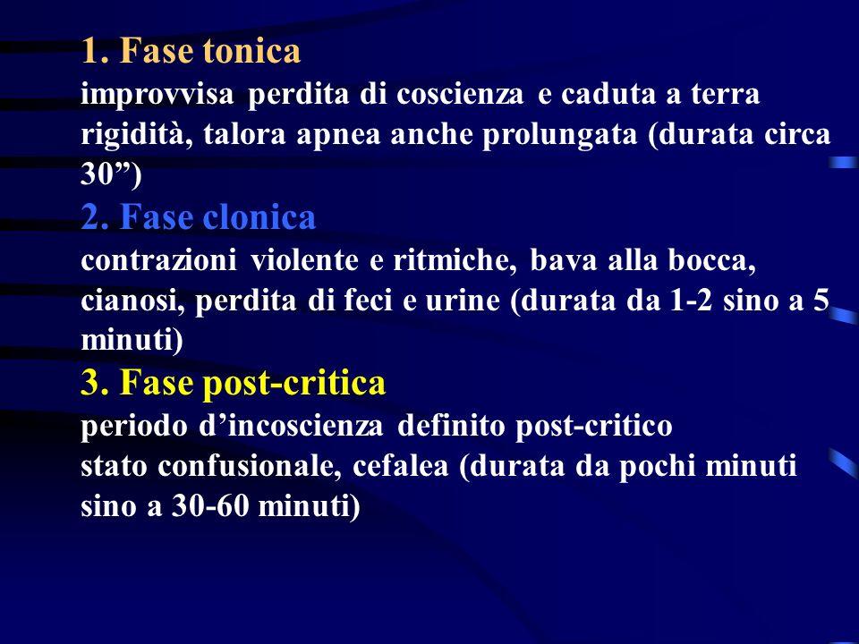 1. Fase tonica 2. Fase clonica 3. Fase post-critica